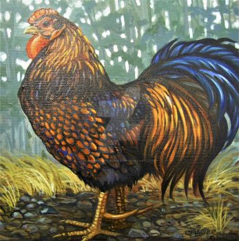 Blue Laced Wyandotte Rooster) by HouseofChabrier
