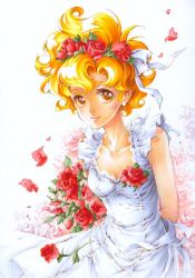 a dream of roses by Naschi