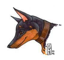 Doberman portrait by kataviech