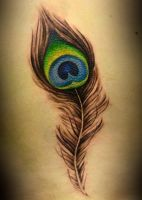 peacock feather by defpattern