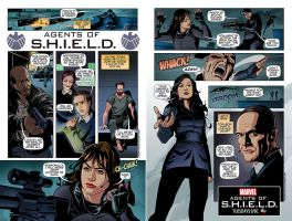 Agents of Shield by pungang