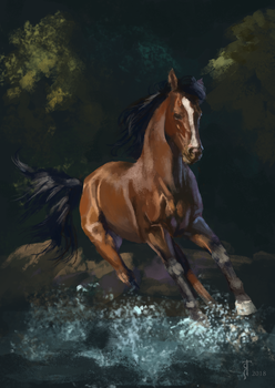 Horse study by MiryAnne