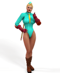 Cammy Costume for V4 and A4 by Terrymcg