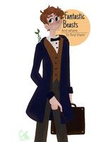 Fantastic Beasts and where to find them by Glowingcandies