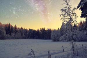 Sweet winter night by Floreina-Photography