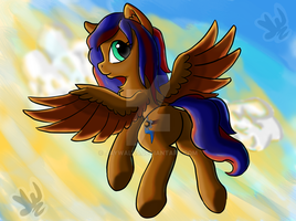 Jay the mare by Jaywalk5