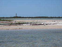 Nice day on Anclote Key by Sorath-Rising