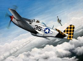 Checkertail P-51 by Greywolf42