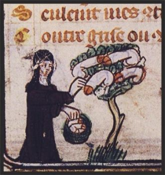 nun harvests disembodied penises from a tree by evilwraith666