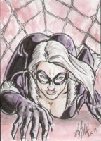 Black Cat crawling by shinlyle