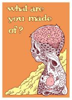 WHAT ARE YOU MADE OF? by schoolboyproject