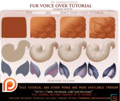 voice over tutorial. Fur .promo. by sakimichan