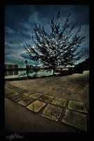 Path Of Darkness by LethalVirus