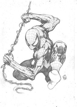 Classic Spiderman by komus