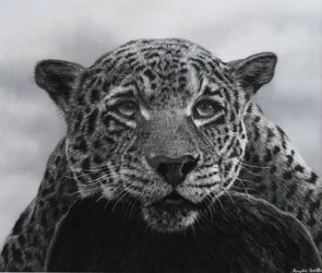 My Jaguar using pastels by AngelaMaySmith