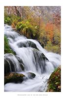 Plitvice Lakes 2012 - XII by DimensionSeven