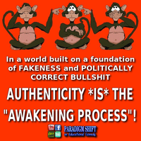 Authenticity Is The Awakening by paradigm-shifting