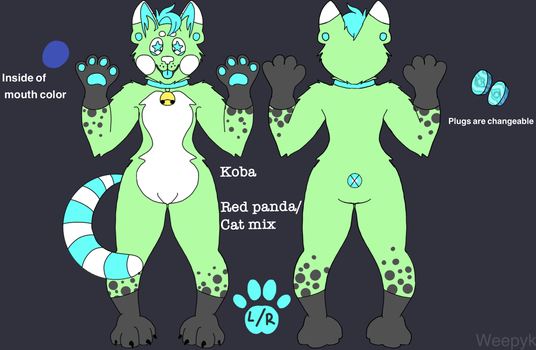 Koba ref sheet  by WeepyKing