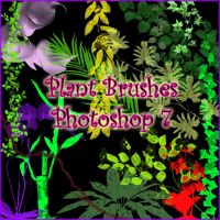 Plant Brushes Photoshop 7 by Forbidden-Stock