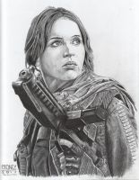 Jyn Erso - Star Wars Rogue One by crow30