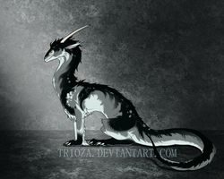 Dragon Design Auction #14 [CLOSED] by Trioza