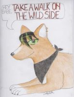 The Lou Reed Wolf by Murder-Rose