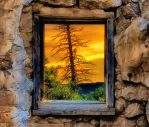 Window by T-Douglas-Painting