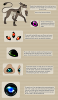 [MEYSTER] - Eyes and their function by LeaTenshi