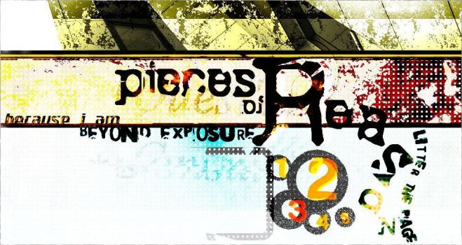 Pieces of Reason-Personal Site by slrfirestorm