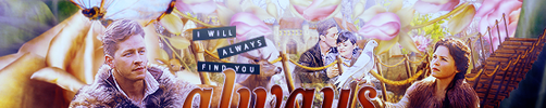I Will Always Find You Banner by elizacunningham