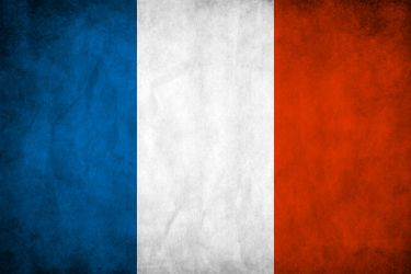 France Grunge Flag by think0