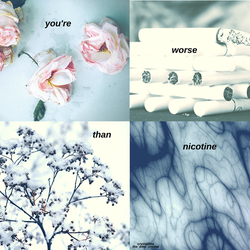 [aesthetic #13] : | nicotine | by snowflake20006