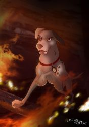 Patch the Fire Dog by R-FakonWolf
