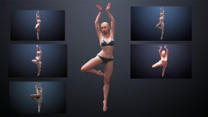 Female Ballerina Pose by inspiring-references