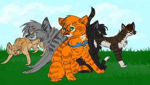 Warrior Cats - Into the wild by Eraizen
