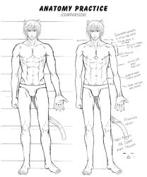 Anatomy practice : Comparison by Bayou-Kun