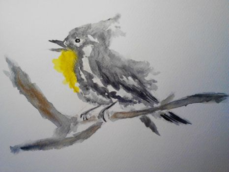 Yellow Throated Warbler by mayIdrawyou