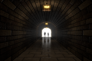 Tunnel Vision by TheDuckCow