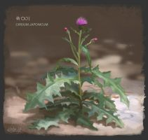 PAD 001 Cirsium Japonicum by Suzanne-Helmigh
