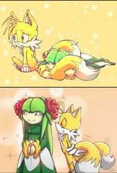 Tails and flowers. by Cheroy