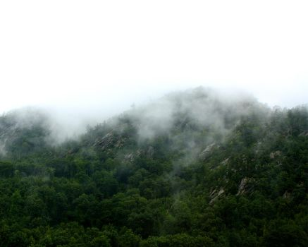 Fogged Mountains by Ohanzee