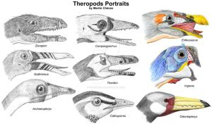Theropods Portraits by PaleoAeolos