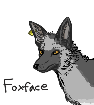 Familiar Foxface by ChimericMachinations