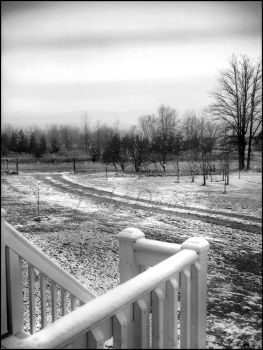 First Snowfall 2005 by Lady-Devine