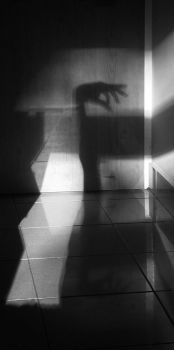 shadow.contract II by aerendial