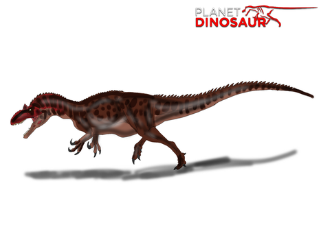 Planet Dinosaur- Allosaurus by Vespisaurus