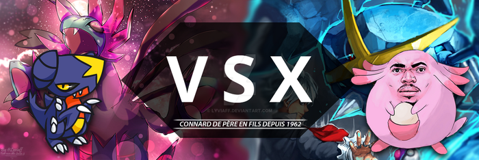 VSX's banner by Lyviaff