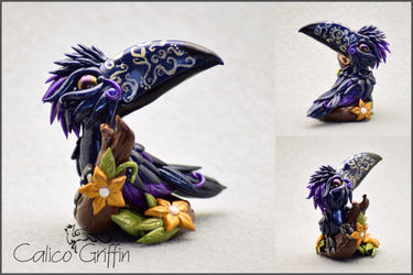 Midnight Toucan - polymer clay by CalicoGriffin