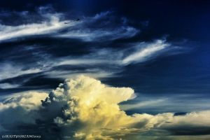 Into the Cold Sky by bAs-fiction
