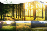 Alive - FREE photoshop action by puckrietveld